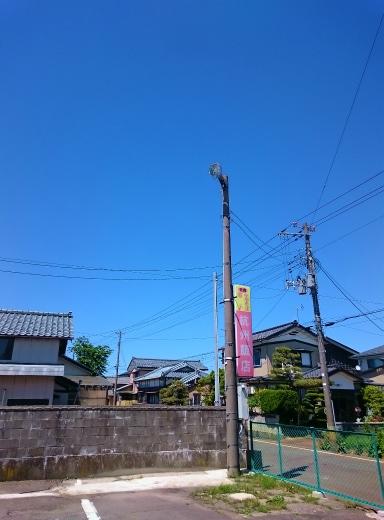DSC_8100.jpg